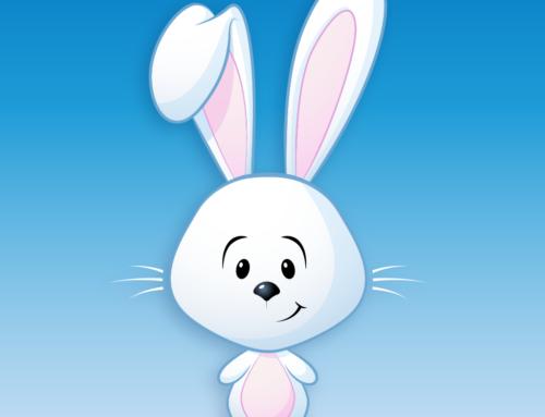 Cotton the Bunny Rabbit